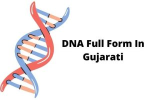 DNA full form in Gujarati